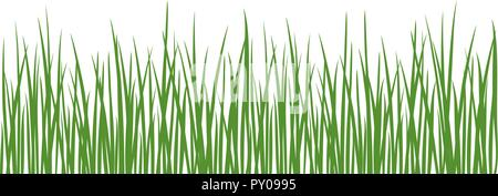 Grass detailed silhouettes. Isolated on white. Herbs garden. For web, wallpaper, decoration, textile, prints banners wrapping packing - Stock Photo