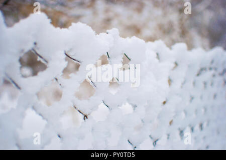 Mesh fence covered in a thick layer of white fresh fluffy snow against a blurred background. Cold winter day in January