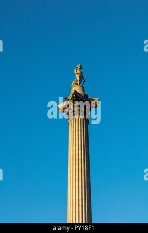 Nelson's Column at Trafalgar Square, London, England, UK, a 51.6 m tall monument, made of sandstone, commemorating Admiral Nelson's death at Trafalgar - Stock Photo