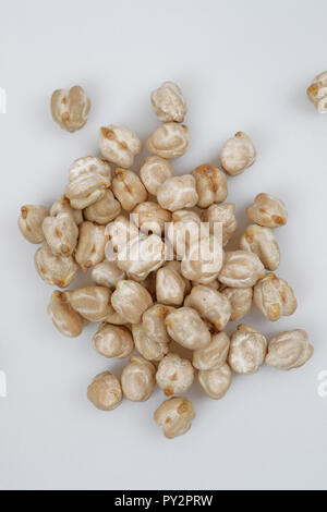 Chickpea or Chick pea (Cicer arietinum) - Stock Photo