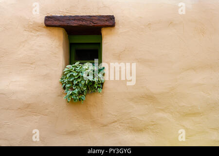 Vintage window with green flowers on plain stone wall, traditional historic medieval house, copyspace, solitude concept - Stock Photo