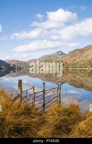 Reflections on Llyn Gwynant in the Nant Gwynant Valley, Snowdonia National Park, North Wales, UK