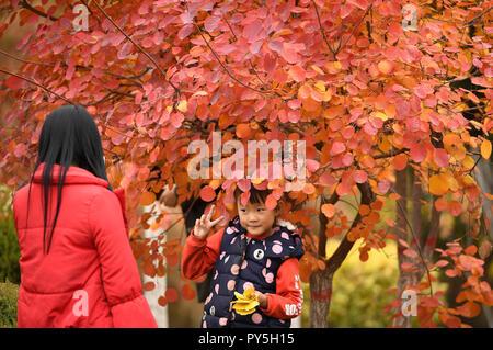 Yinchuan, China's Ningxia Hui Autonomous Region. 20th Oct, 2018. People visit the Fenghuang Park in Yinchuan, northwest China's Ningxia Hui Autonomous Region, Oct. 20, 2018. Credit: Wang Peng/Xinhua/Alamy Live News - Stock Photo