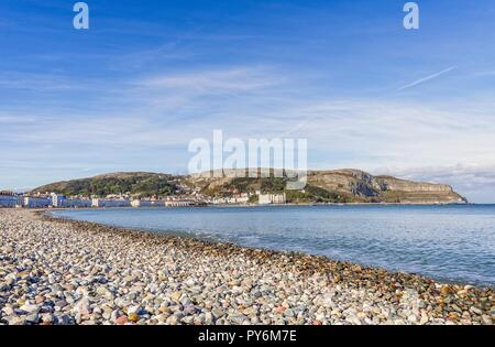 A view of Llandudno's curving shoreline lined by white fronted hotels. The Great Orme headland is in the distance and a blue sky is above. - Stock Photo