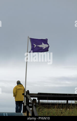A man wearing a yellow rain slicker stands beneath a purple Shark Warning flag at Nauset Beach, Orleans, Massachusetts, on a chilly autumn day - Stock Photo
