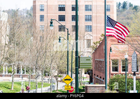 Asheville, USA - April 19, 2018: Buildings, courthouse and green Pack Square Park in North Carolina NC famous town, city in the mountains, sign, flag - Stock Photo