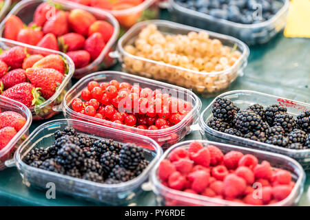Many plastic containers boxes of berries, white and red currants, blackberries, raspberries and strawberries on display in farmers market - Stock Photo