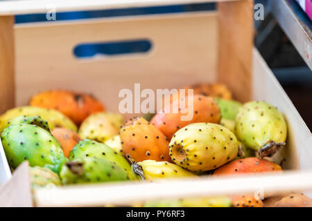 Closeup of many colorful orange, yellow, green, ripe prickly cactus pear fruits on display in farm market store - Stock Photo