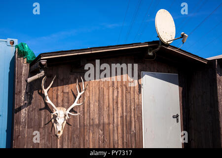 cabin on a campground on lake Harkort in Hagen-Vorhalle, antler and satellite dish, Hagen, Germany.  Huette auf einem Campingplatz am Harkortsee in Ha - Stock Photo