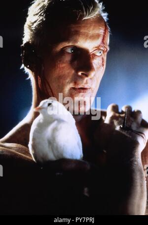 Original film title: BLADE RUNNER. English title: BLADE RUNNER. Year: 1982. Director: RIDLEY SCOTT. Stars: RUTGER HAUER. Credit: LADD COMPANY/WARNER BROS / Album - Stock Photo