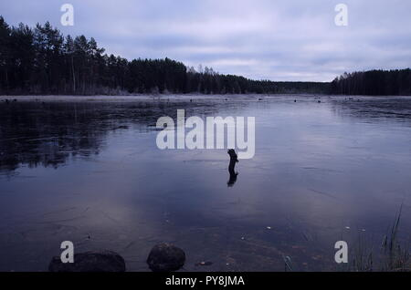 First thin layer of ice over a lake in Dalarna on a cold autumn morning. - Stock Photo