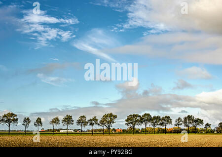 Predominantly blue sky with various kinds of clouds over a flat landscape with trees, fields and farms in Noordoostpolder (North East Polder), the Net - Stock Photo