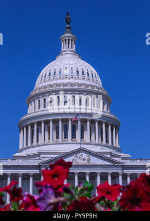 The Capitol Building in Washington DC, capital of the United States of America - Stock Photo