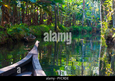 Traditional boat of Kerala Backwaters floats through the jungle. Backwaters in Kerala is a network of 1500 km of canals both man made and natural. - Stock Photo