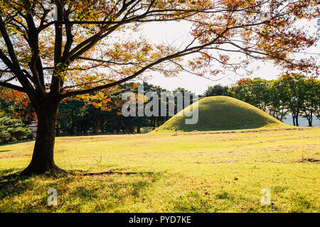Gyeongju Gyerim and royal tomb, ancient ruins at autumn in Gyeongju, Korea - Stock Photo