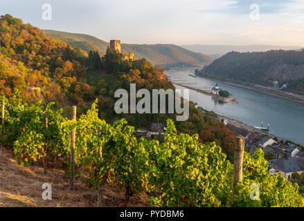 Kaub, Burg Gutenfels, vineyards - Stock Photo