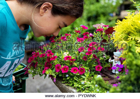 Fairfax, VA USA. Jul 2016. A young girl smelling this sweet flower with a small mouse and a sailor figurine among this garden`s lushness. - Stock Photo