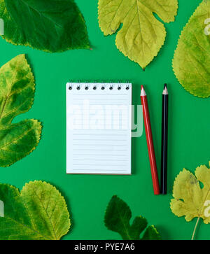 open notebook in line with white blank pages on a green background and two wooden pencils, next to yellow maple leaves, top view - Stock Photo