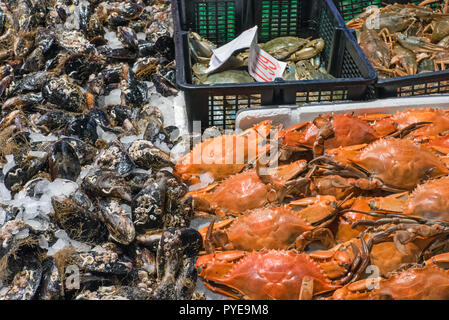 Crustaceans and oysters for sale at a market in Madrid, Spain - Stock Photo
