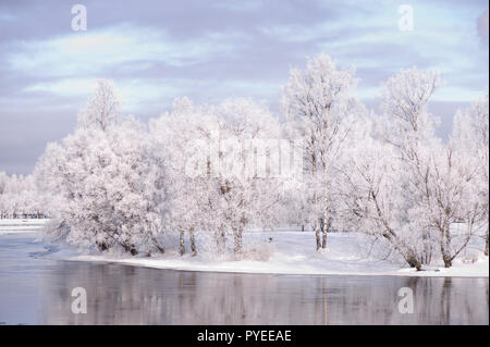 River flowing through winter landscape. Trees covered with frost. - Stock Photo