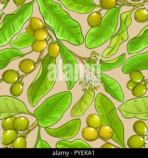 shea vector pattern on white background - Stock Photo