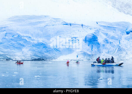 Snowfall over the motor boat with tourists and kayaks in the bay with huge blue glacier wall in the background, near Almirante Brown, Antarctic penins - Stock Photo
