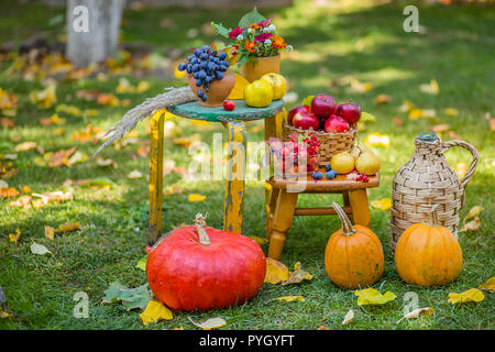 Autumn scene with plants, pumpkins, apples in a wicker basket, ceramic pots, wooden chair, vintage style, composition in the garden, outdoors. - Stock Photo