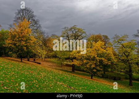 Würzburg: park near Festung Marienberg (Marienberg Fortress), Lower Franconia, Germany - Stock Photo