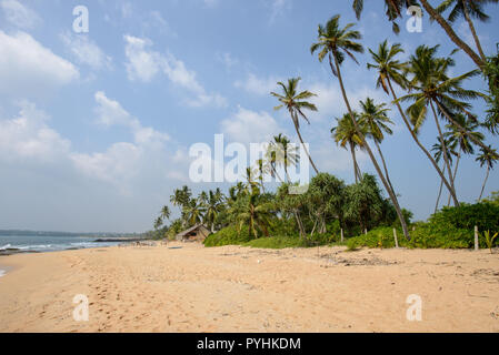 Palms and beach landscapes of the Indian ocean in Tangalle, Sri Lanka - Stock Photo