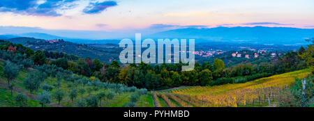 Sunset panoramic view over Cavriglia and Valdarno from a hill covered in olive trees and vineyards in autumn, Tuscany, Italy - Stock Photo