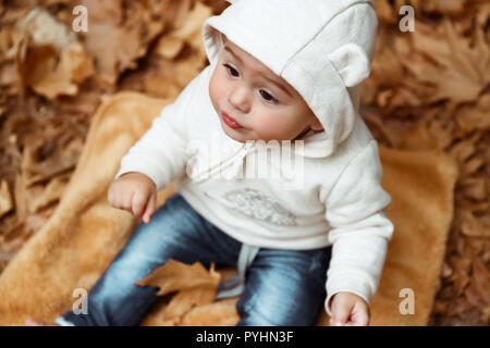 Sweet baby in autumn forest, cute little boy sitting on the dry tree leaves in the park, enjoying autumnal holidays, happy carefree childhood - Stock Photo