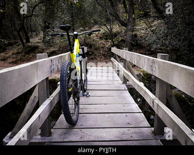 A yellow mountain bike stands on a wooden bridge in the forest. - Stock Photo