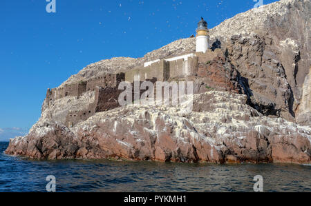 Bass Rock Lighthouse, off North Berwick, Scotland, heritage site of breeding colony of Northern Gannets, Morus bassanus, built in 1902 by D Stevenson - Stock Photo