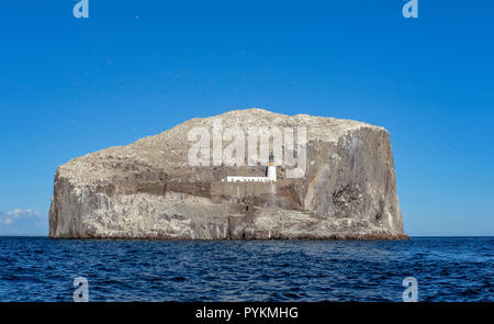 Bass Rock, off North Berwick coast, heritage site for breeding colony of Northern Gannets, Morus bassanus, lighthouse built in 1902 by David Stevenson - Stock Photo