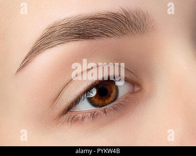Close up view of beautiful brown female eye - Stock Photo