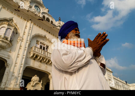 Sikh devotee praying at the entrance into the Golden Temple Complex - Stock Photo