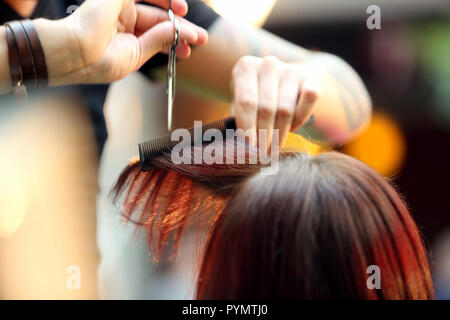 Hairdresser cuts the hair of the client with scissors in the hairdressing salon - Stock Photo