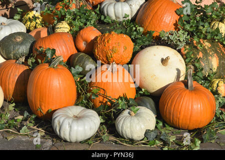 Assortment of Pumpkins on display in Covent Garden Piazza In the week preceding Halloween, London. UK - Stock Photo