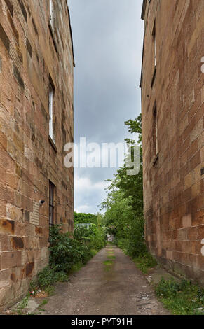 Looking through a small overgrown Alley between old Tenements in Glasgow on a grey Cloudy Summers Day. Glasgow, Scotland, UK. - Stock Photo