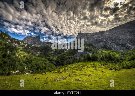 Colorful summer scene wirh forrest and rocky hills at background. Amazing view of austrian Alps - Stock Photo