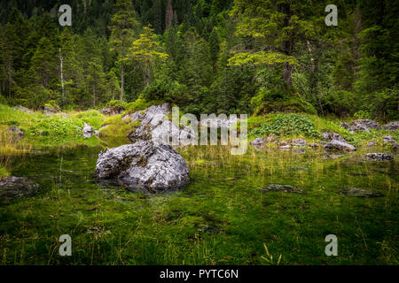 Small pond Gosaulacke under Dachstein in Alps, near Salzburg, Austria with great reflection of the green forest - Stock Photo