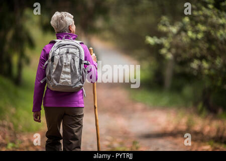 Mature woman goes for a hike along a leafy forest trail. - Stock Photo