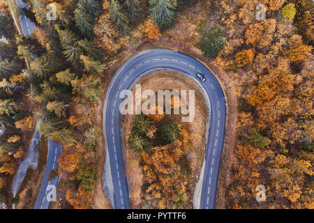 Beautiful road in autumn forest. Aerial landscape of fall season, top view of car driving on mountain serpentine by drone. - Stock Photo