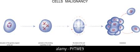 vector illustration of a process of malignancy cells - Stock Photo