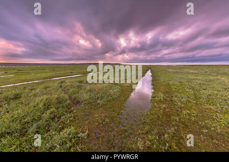 Sunset over ditch in tidal marsh flat at Waddensea, Friesland, Netherlands - Stock Photo