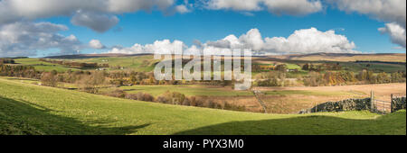 North Pennines AONB panoramic Landscape, Ettersgill, Teesdale from Hield House - Stock Photo
