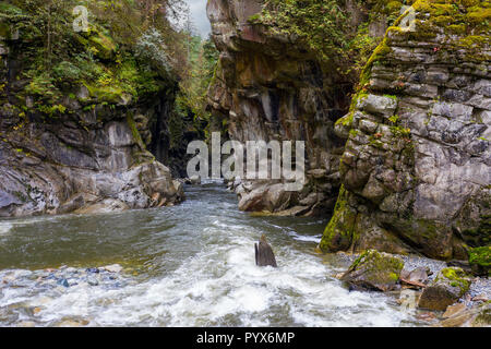Coquihalla River flowing into the canyon in Coquihalla Canyon Provincial Park near Hope, British Columbia, Canada.