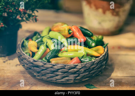 Colorful chili peppers in wicker basket, bowl, on a wooden rustic table, different varieties, natural rural autumn background - Stock Photo