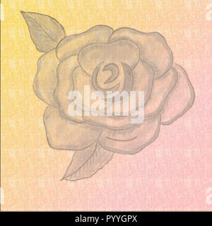 Rose Paper texture abstract background. vintage paper texture. Peachy/yellow paper background. Rose drawing paper design:decorative Letter, designs, - Stock Photo