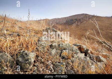 Shallow depth of field view of rock stones covered with lichen surrounded by yellow autumn grass on gentle hills in Khakassia, Russia - Stock Photo
